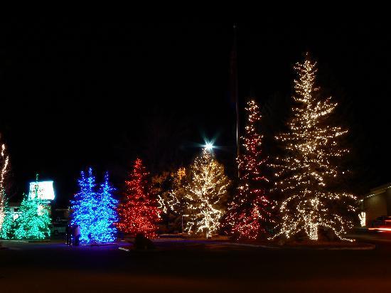 Christmas Light Display In Kitchener Waterloo