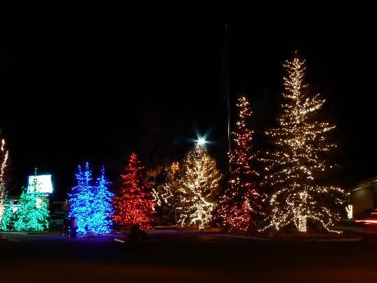 Christmas Light Display In Kitchener Waterloo