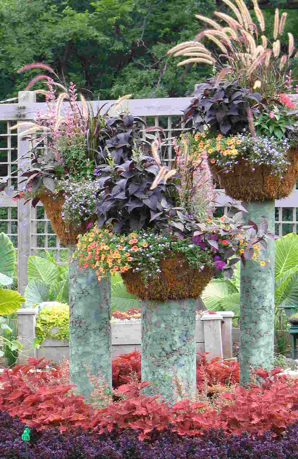 Contemporary Container Garden Design R And
